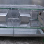 Любимая клетка для содержания кроликов, Пермь
