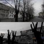 Кронирование и удаление деревьев, Пермь