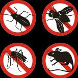 Уничтожение насекомых клопов тараканов краснокамск сэс, Пермь
