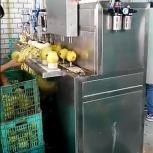 Машина для яблоко чистки и удаления сердцевины 400 кг/час, Пермь