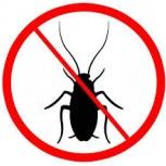 Уничтожение (дезинсекция) тараканов, клопов, блох, Пермь