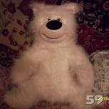 медведь плюшевый, Пермь
