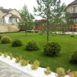 Ландшафтный дизайн. Озеленение. Благоустройство, Пермь