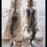 Шкуры волка в Перми, Пермь