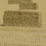 Сено солома в тюках и рулонах зерно корма ракушка, Пермь