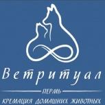 Ветритуал Пермь. Кремация домашних животных., Пермь