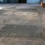 Клетки для кроликов, Пермь